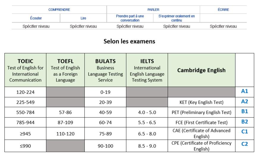 Examens-niveau-langue